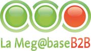 Megabase B2B